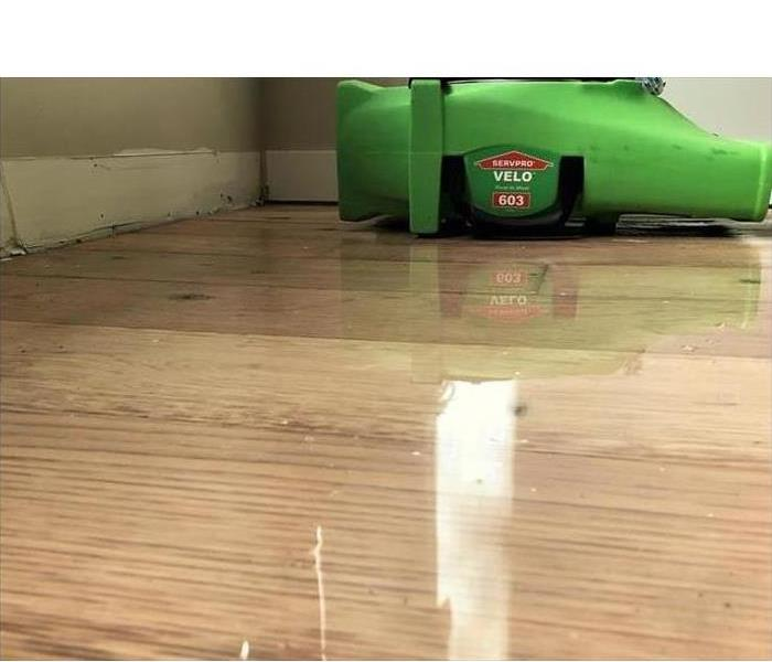Wet wooden floor and one air mover