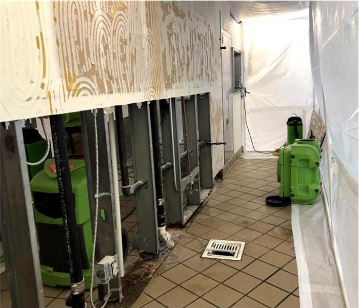 Setting up mold containment on facility, facility covered with plastic to avoid further mold contamination