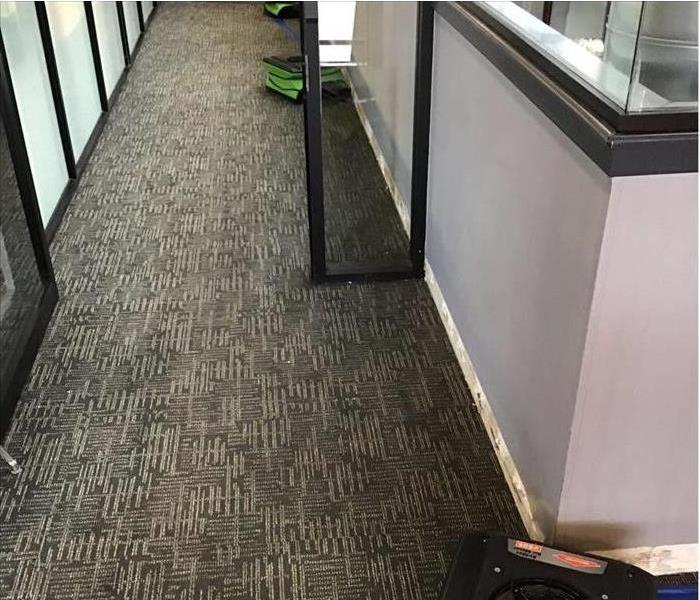 Air movers placed on a carpet of an office