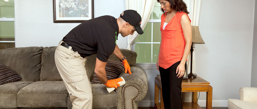 Longmont, CO carpet upholstery cleaning