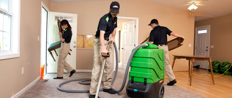 Longmont, CO cleaning services